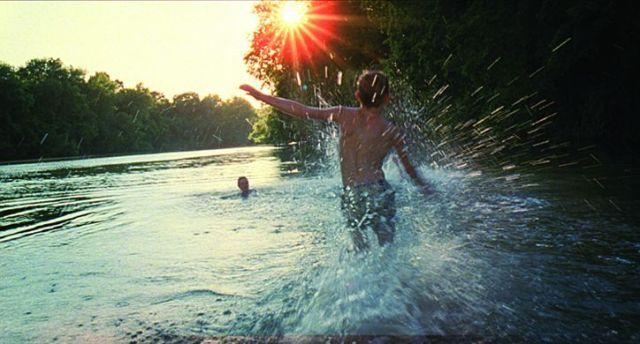 tree-of-life-water-splash